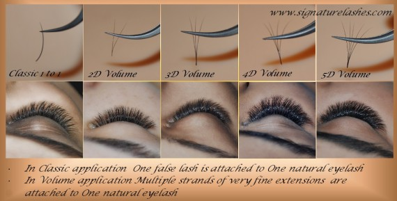 Signature Lashes, Volume Eyelash Extensions, Classic Eyelash Extensions, 3d Volume Eyelash Extensions, Russian Volume , Hollywood Volume
