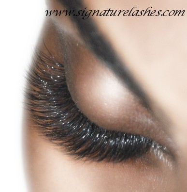 37db42f16bf Signature Lashes by Expertly Trained Master Lash Artist, Classic ...